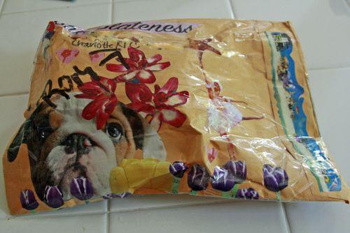 Dru's package back