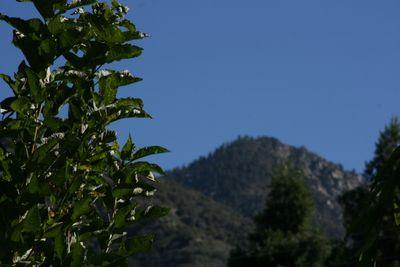 Apple Country_Oak Glen_October 3 012