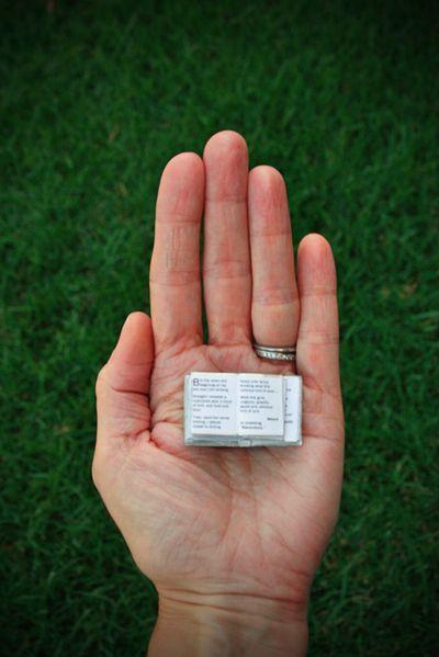 LIZ_BOOK OPEN IN HAND