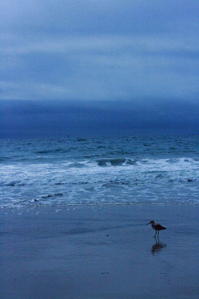 Beach photos_poe day 024