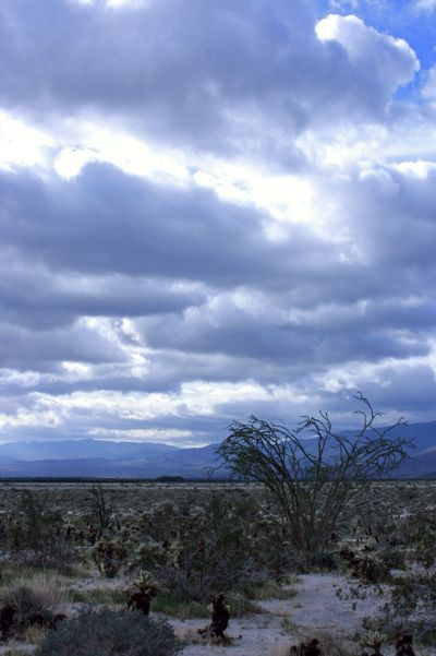 Maxfield parrish clouds