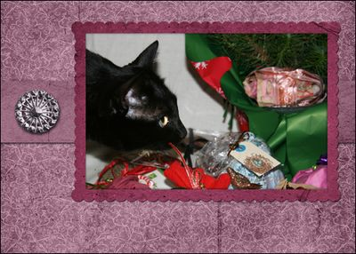 Poppy with gifts in pink frame