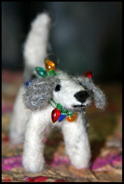 Pip's dog 018