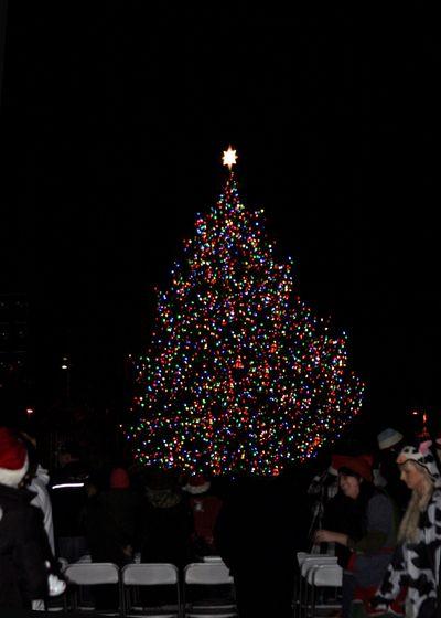 Christmas Tree Lighting_2011 12 05_0205