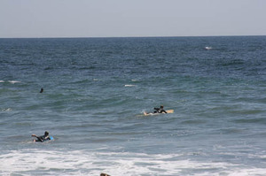 Surfers_paddling_out