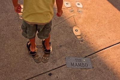 Mambo_mo_mo