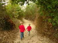 Nature_walk_010