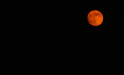 Orange_moon_oct_24_07