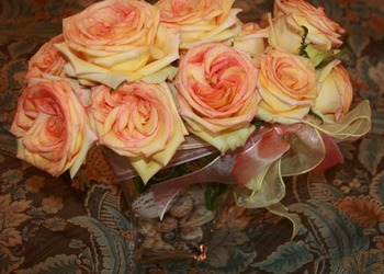 Roses_and_shells